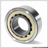 FAG NU236-E-M1-C3  Cylindrical Roller Bearings