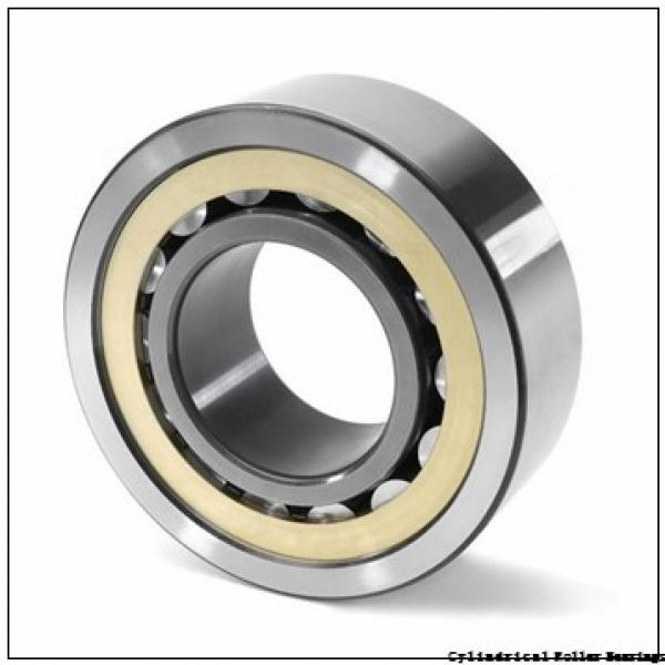 120 mm x 310 mm x 72 mm  FAG NJ424-M1  Cylindrical Roller Bearings #2 image